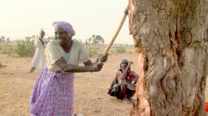 Darfur 3.png